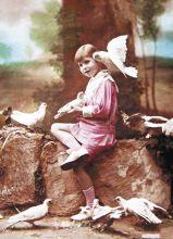 Почтовая открытка Голубиная почта